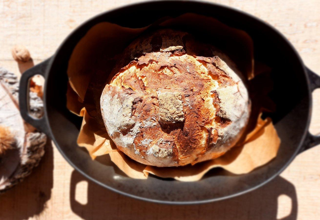 pains cocotte - mijote et papote