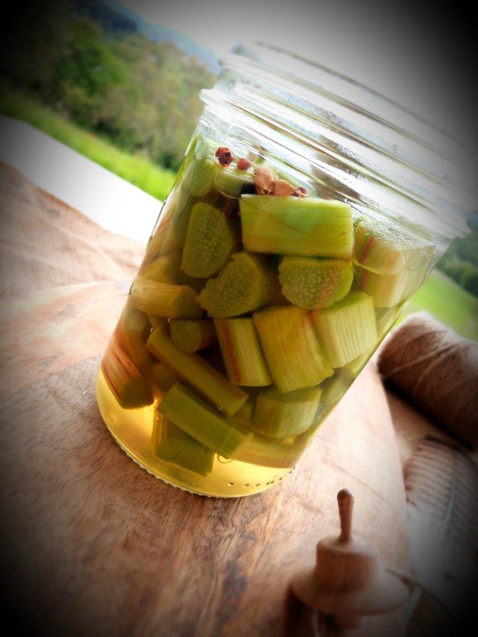 pickles rhubarbe-mijoteetpapote
